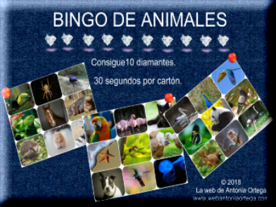 Bingo de Animales on line